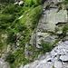 Die Leiter im Val d'Auriglia
