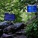 Am späten Nachmittag nach unserer Ankunft in den Bergen unternahmen wir eine kleine Wanderung ins Долина Аманауз (Dolina Amanauz): <br /><br />Nach etwa einer halben Stunde Marsch im Tal südlich von Домбай (Dombaj) erreichten wir die Grenzzone worauf eindeutig Schilder hinweisen. Weiter darf man mur im Besitz eines Border-Permits gehen - wir hatten natürlich eines babei, kontrolliert wurden wir in diesem Tal jedoch nicht.