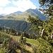 Kurz voer der Alp Stavel Nual Sut