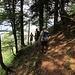 ... und steigen im Schellenberg-Wald ab ...