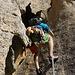 Nicht immer muss Klettern elegant sein - hier war die Arschvariante einfach effektiver!