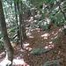 arrivo a Ravöra, guardando all'indietro. a sinistra arriva il sentiero da Chignöö, al centro della foto, individuato dal palo infisso nel terreno, l'inizio del sentiero appena percorso