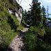 Weg zur Felsenkanzel