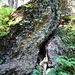 eindrückliche Gesteinsformationen am Wegesrand