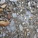 Sassi e ghiaccio(Foto Jkuks)