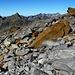 Auffällig vielfarbiges Gestein unterhalb des Gletschers