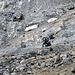 Sachen gibt's. [tour85365 Hier] ein Erfahrungsbericht von [u Camox]. Zumindest im Abstieg von der Turtmannhütte beneidete ich den Biker.