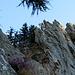"Der Teil des Klettersteiges verdient den Namen ""Difficile""."