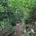 Der Weiterweg über den Grat zum Westgipfel.