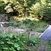 Über diese Brücke und weiter oben bei der Verzweigung links hoch bis zum Punkt 803