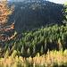 Il pascolo dell'Oviga, da dove parte l'escursione.