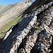 Am Nordgrat faszinierende Platten aus unterschiedlichen Steinen zusammengebacken und mit Flechten überwuchert