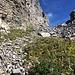 Unterhalb Punkt 2287: beim gelblich, hellen Fels (am linken Bildrand etwa in der Mitte) steigt man von der Felsstufe in die Geröllrampe runter