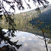 Der grösste natürliche See Tschechiens. Der Karsee liegt wohl sehr windgeschützt, denn die Wasseroberfläche ist sehr ruhig.