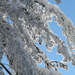 Impressionen aus dem Schnee am Warten
