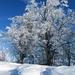 Schneeverwehungen am Gipfelgrat.