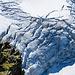 Faszinierende Strukturen im Eis