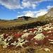 Herbststimmung auf der Alp Flix