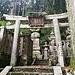 """Ein Torii im Okuno-in. Ein Torii hat die Funktion eines Tors, bedeutet aber auf Japanisch """"Vogelsitz"""". Das Passieren des Torii gleicht einer Reinigung des Geistes und der Seele. Vor dem Schrein klatschen die Gläubigen drei Mal in die Hände (das Geräusch der klatschenden Hände erinnert an den Flügelschlag des Hahns)."""