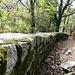 Un tratto del sentiero di discesa si svolge su questo muretto.