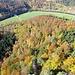 Bunt ist der Herbstwald
