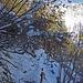 Auf dem Knappensteig zur Leobnerhütte