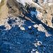 Beim Gipfelaufstieg (1)