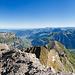 Gipfelpanorama Vrenelisgärtli