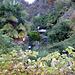 lussureggiante vegetazione a Verscio