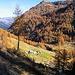 L'Alpe di Sfii.