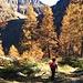 In discesa verso Piemantu e l'Alpe di Sfii.