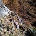 Sur le sentier Brand - Zermatten