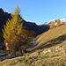 Aufbruch oberhalb Bosco Gurin im ersten Sonnenlicht