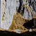Der Weiterweg: Via Pfädli einem Felsvorsprung hinunter.