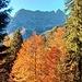 Herbstlicher Blick zur Hochkünzelspitze
