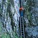 Mein Begleiter auf der Leiter