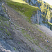 Schafherde beim Abstieg vom Forstberg her