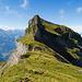 Blick zum Forstberg, dessen Gipfel grad noch verdeckt ist