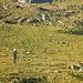 Abstieg in den Spiggegrund via Hochie.