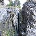 Die Leiter ermöglicht den Weiterweg oberhalb dieser Felsstufe. Durch die Nässe könnten die Felsen rutschig sein und vermutlich ist diese Stelle auch im Hochsommer selten trocken.