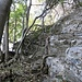 Tra rocce, radici e alberi si sale...