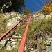 Mithilfe der Leiter überwindet man die letzte Stufe, bevor man auf die weiten Wiesen des Hinter Heubrigs gelangt.