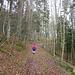 Auf dem Forstweg gehts gemütlich hoch
