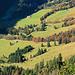 Ein Detail aus dem Riemenstaldner Tal