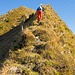 Der grasig kraxelige Grat im unteren Teil des finalen Anstiegs zum Sisiger Spitz