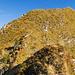 Das steilste Teilstück bis zum Gipfel. Wir folgen dem hier nur noch schwach ausgeprägten Grat in die Flanke hinein und ersteigen diese leicht nach links querend, um auf den Gratrücken zu kommen, der unschwierig direkt zum Gipfelkreuz führt.