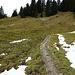 Wanderweg durchs Feuchtgebiet, hier gibt es noch einige Schneereste