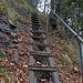 Zwischen Gebetschwil und Hinterbergen hat es einige Leitern