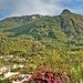 Monte Epomeo, 787 m.