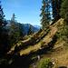 Nach dem Geröllfeld geht's über diesen Weg hinaus zu den Weiden der Valscherina Alpe.